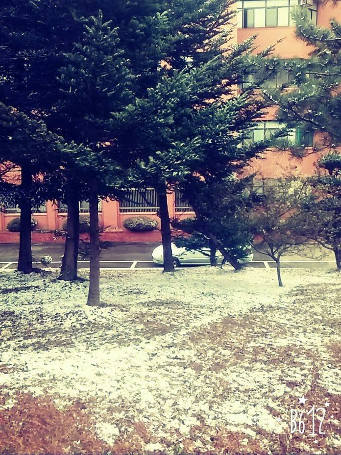 O Visual Do Campus Da Facu Cheio De Neve!