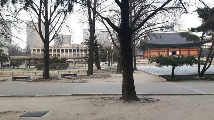 Seokjojeon Hall E Junghwajeon Hall, Acervo Pessoal