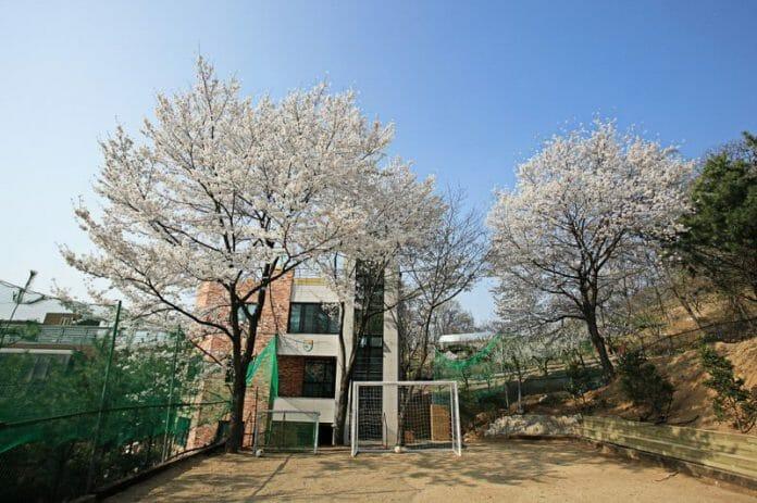 A Escola Wca Em Seul. Foto: Wca
