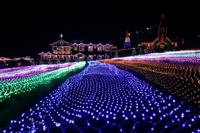 Plantações Iluminadas Durante A Noite Em Herb Island. Foto: Visit Korea