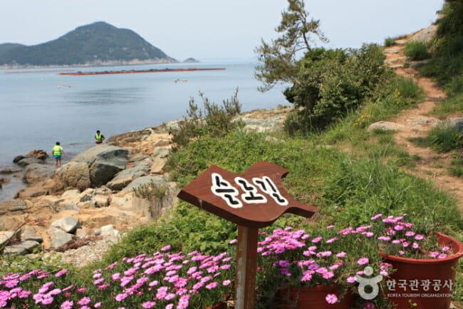 Trilha Próxima À Costa Em Cheongsando. Foto: Korea Tourism Organization