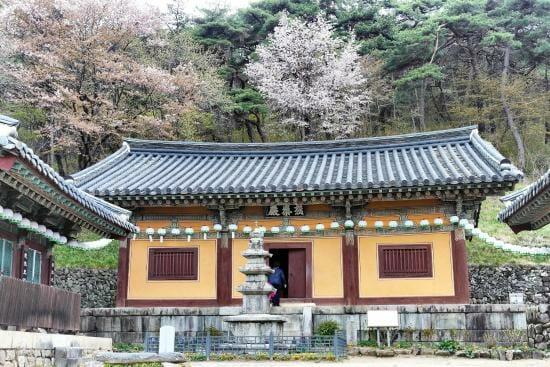 Templo De Bongjeongsa. Foto: Trip Advisor