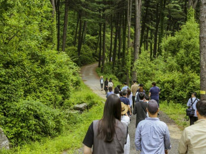 Jatyanggi Purunsup Resort (Via: Korea Tourism Organization)
