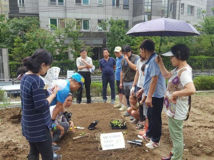 Moradores Escutam Os Conselhos Do Instrutor De Jardinagem Em Gwangjin-Gu, Seul. Foto: Koreatimes