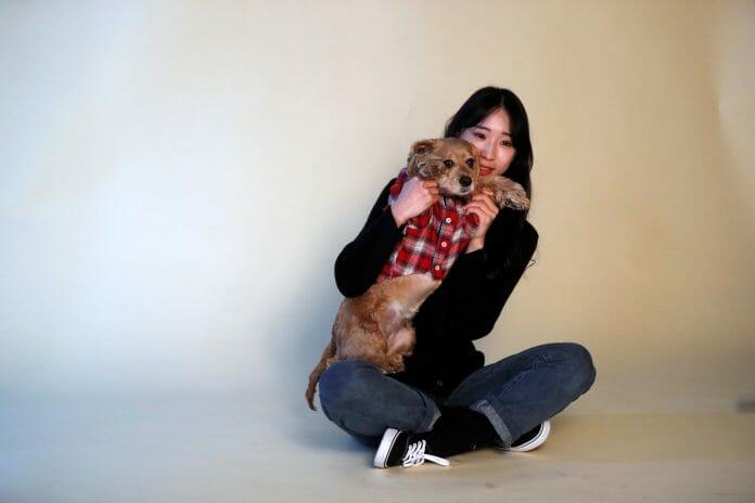 Daegu, Uma Cidade Pet Friendly, Lança Nova &Quot;Cantina&Quot; Para Gatos De Rua