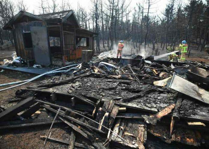&Quot;Perdemos Tudo&Quot;: Incêndio Em Gangwon Deixa Vítimas Sem Lugar Para Retornar