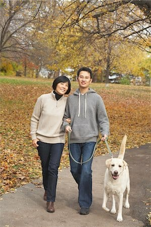Pets Trazem Novas Oportunidades De Trabalho Para Idosos Na Coreia