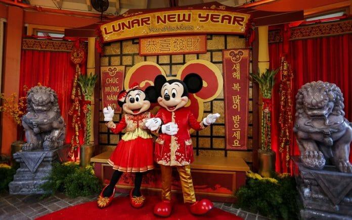 Rato Branco Anuncia Abundância E Oportunidades No Novo Ano Lunar
