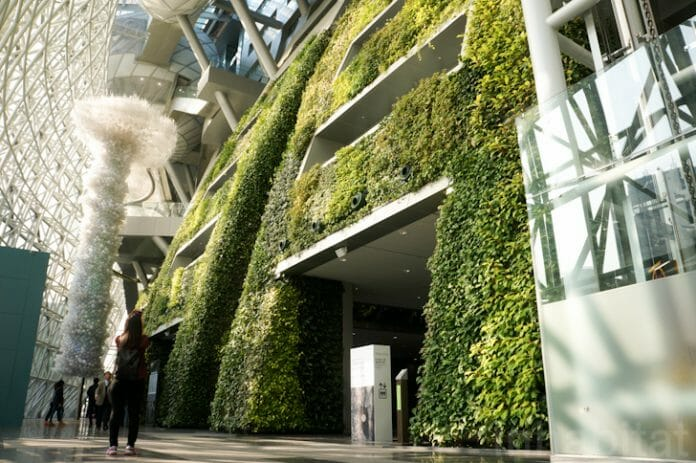 Cidade De Seul Investirá Mais De 1 Bilhão De Reais Em Agricultura Urbana