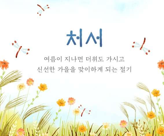 As 24 Estações Coreanas
