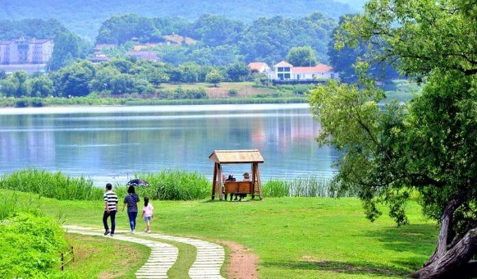 Uma Visita Ao Jardim Namyangju
